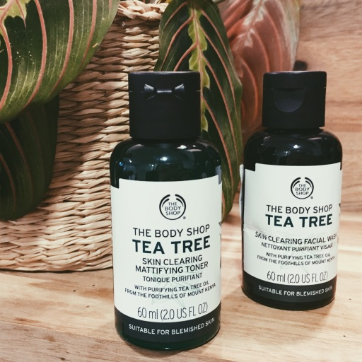 in flight beauty survival guide body shop tea tree oil face product routine