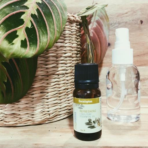 in flight survival guide essential oils diy spray